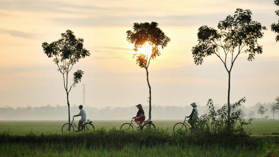 Changement climatique et marchés émergents après la pandémie
