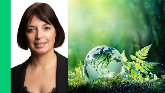 Ambitions climatiques et neutralité carbone : une opportunité de marché